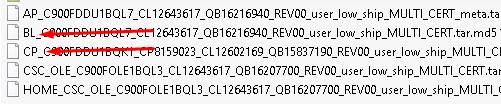Input Samsung Galaxy A20 SM-A205GN Flash File